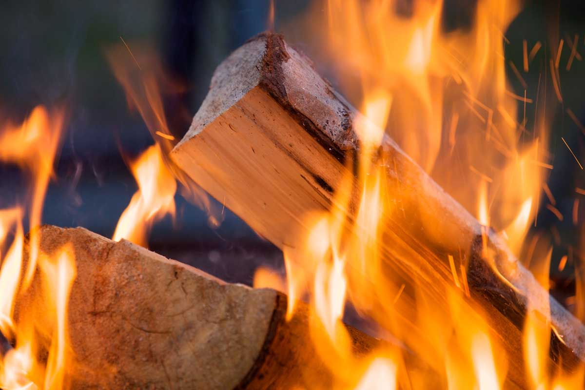 Kiln Dried Logs buying guide for beginners