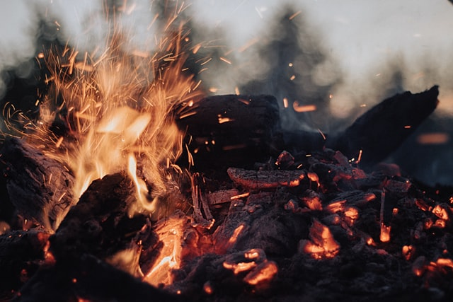 Should your logs crackle in a fire?